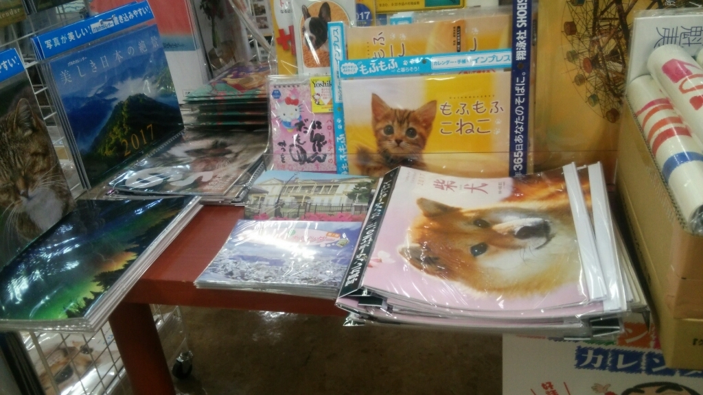 北海道新聞夕刊みなみ風に、セラピア函館いか姫カレンダー掲載!_b0106766_17110451.jpg