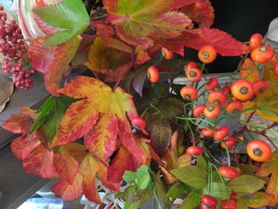 オークリーフ(紅葉と老爺柿)_f0049672_17512253.jpg