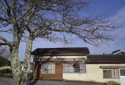 TPPバスの終着駅は日本という国の墓場。_c0243877_10413443.jpg
