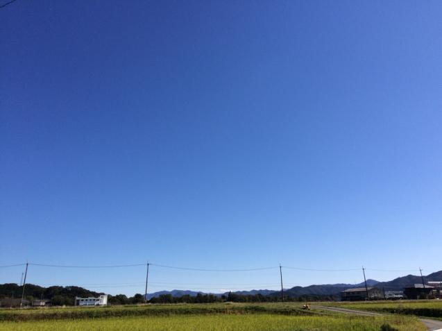 f0379286_20120009.jpg