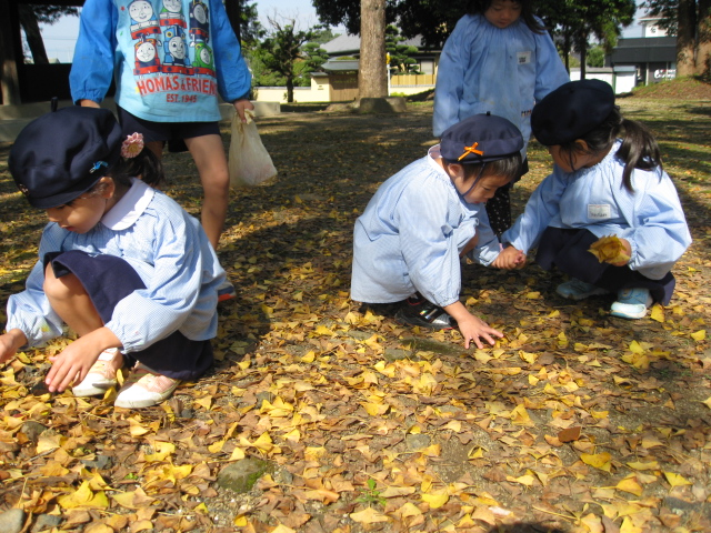 秋のお散歩_c0107515_217098.jpg