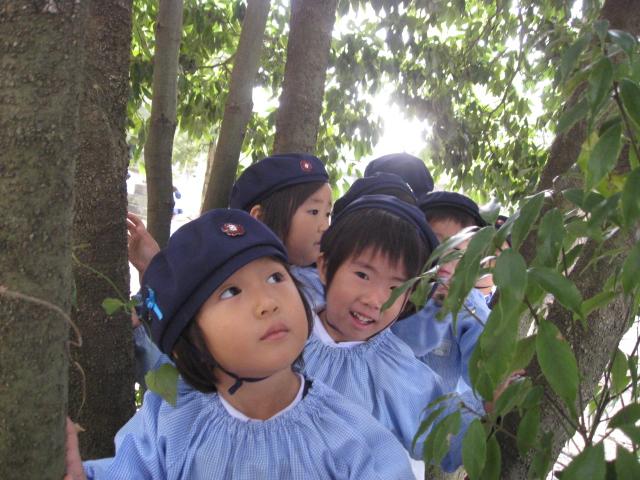 秋のお散歩_c0107515_219752.jpg