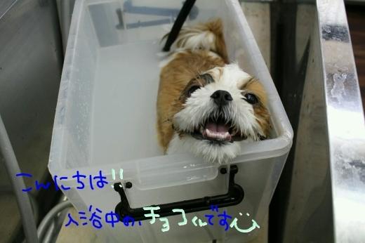 四日目!!笑_b0130018_00220106.jpg
