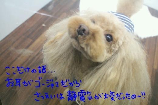 四日目!!笑_b0130018_00350219.jpg