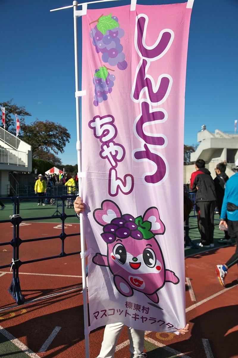 第26回ぐんまマラソン「ご当地キャラハイタッチ隊」_a0243720_23541342.jpg