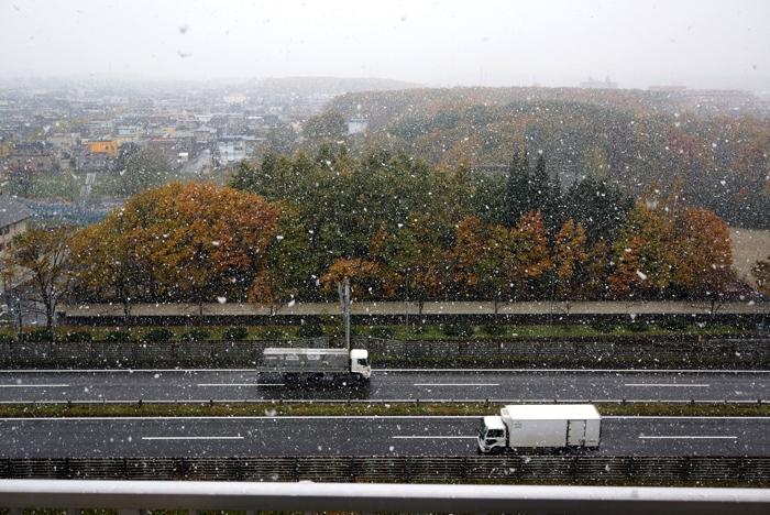 ボタン雪と11月3日の意味_c0182775_170517.jpg