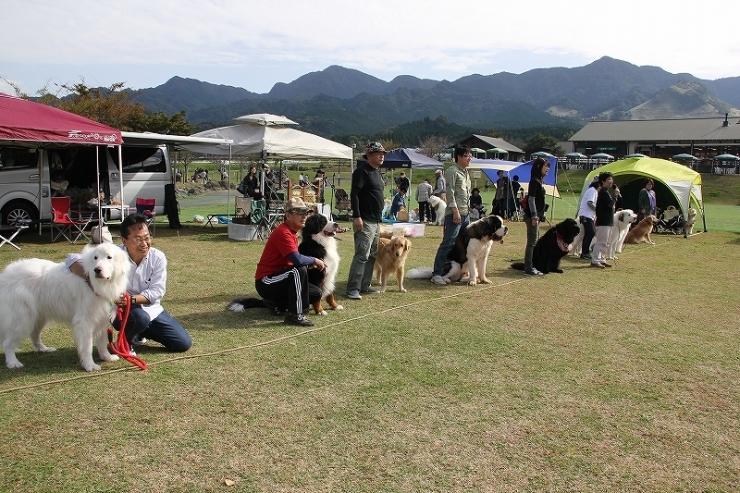 2016 DEKAWAN FC 秋のミーティング・南阿蘇_b0135889_15110435.jpg