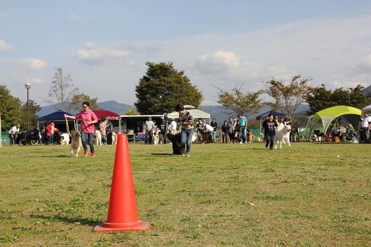 2016 DEKAWAN FC 秋のミーティング・南阿蘇_b0135889_15240650.jpg