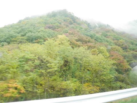 開田高原へ_e0201009_22022555.jpg