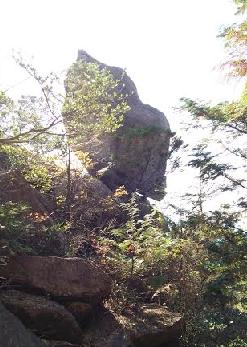 近江湖南アルプスをハイキング(中平)_f0354314_11330286.png