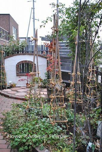 *退院の花束と今の庭*_e0159050_16493948.jpg