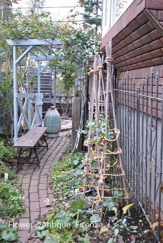 *退院の花束と今の庭*_e0159050_16495883.jpg