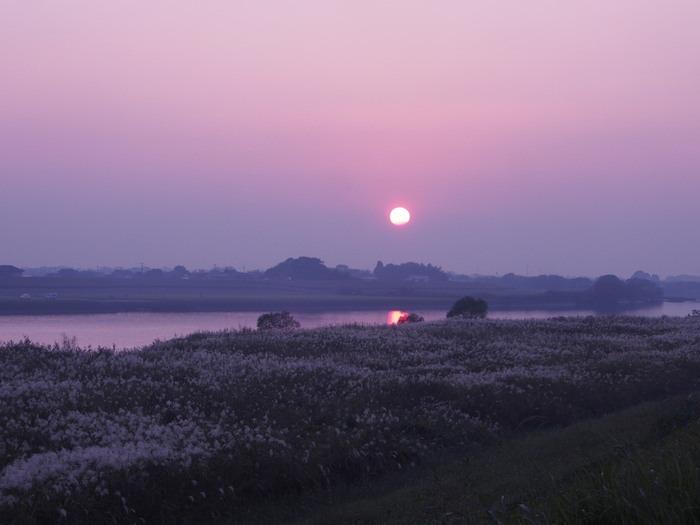 日没前の筑後川_a0149488_20302940.jpg