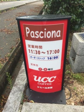 Pasciona   不動谷川流域滝めぐり_e0115904_23145245.jpg