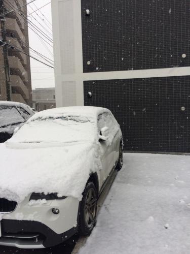 雪です_a0167308_20192075.jpg