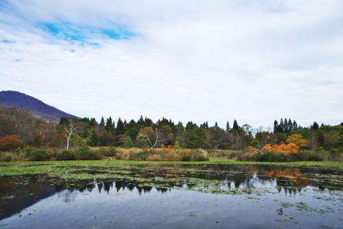 妙高高原 いもり池の紅葉_a0263109_11321084.jpg