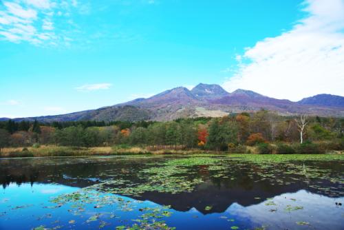 妙高高原 いもり池の紅葉_a0263109_11321101.jpg