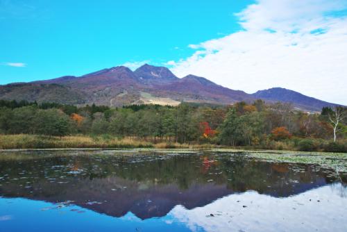 妙高高原 いもり池の紅葉_a0263109_11321853.jpg