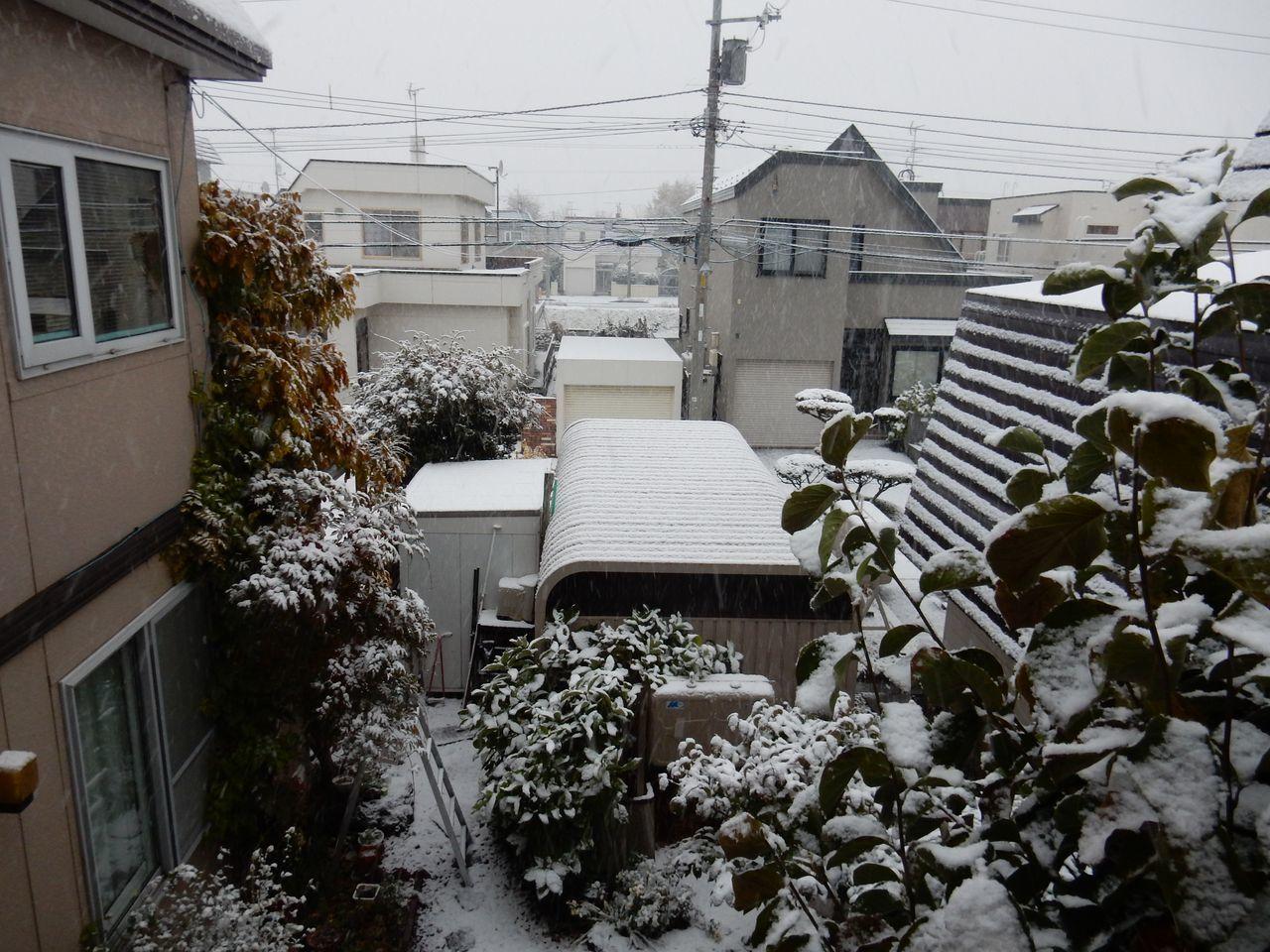 夜が明けたら雪国だった_c0025115_21093607.jpg