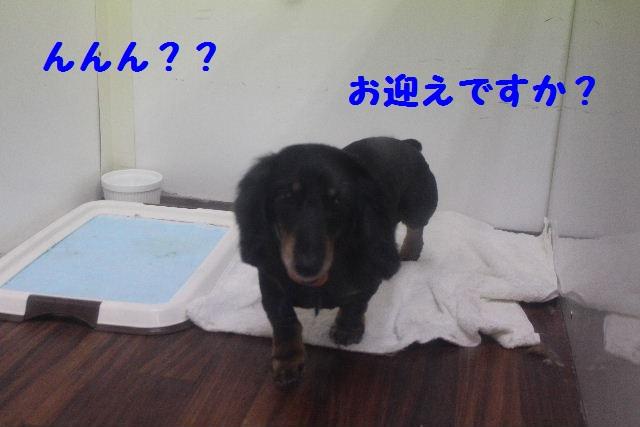 いっぱ~い!!_b0130018_6581284.jpg