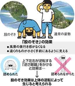 『右肩が痒い場合は 鏡の前で、左肩をかけ』/ Discover_b0003330_9453595.jpg