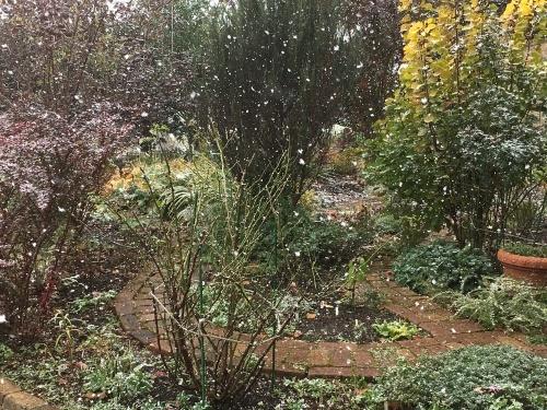 まだ終わってないのに雪!_e0326953_11311521.jpg