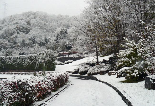11月の雪景色_d0162994_8341072.jpg