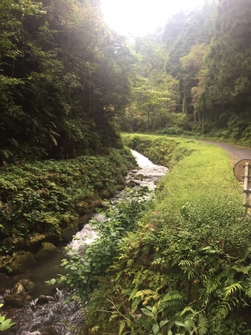 Pasciona   不動谷川流域滝めぐり_e0115904_03552331.jpg