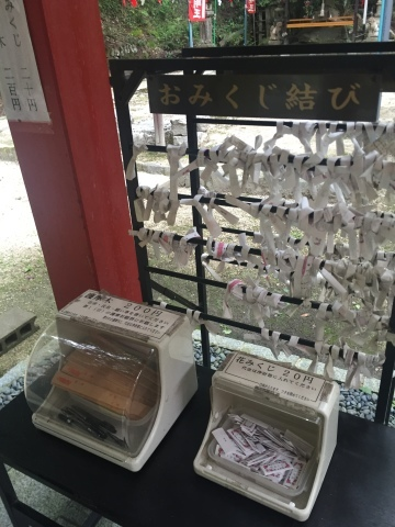 Pasciona   不動谷川流域滝めぐり_e0115904_03583402.jpg