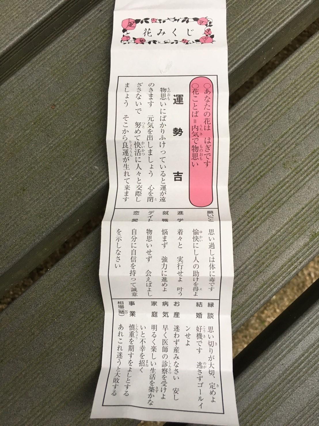 Pasciona   不動谷川流域滝めぐり_e0115904_03591089.jpg