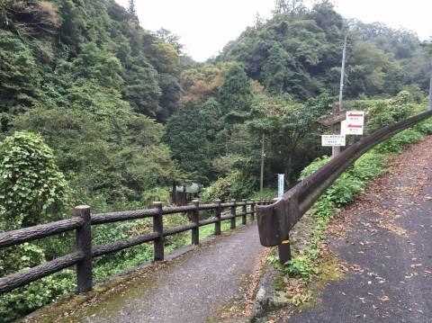 Pasciona   不動谷川流域滝めぐり_e0115904_04050495.jpg