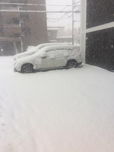 吹雪…_a0167308_19475011.jpg
