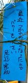 2007年7月の一言_e0360016_17255553.jpg