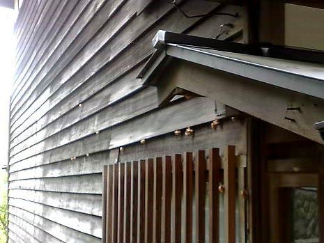 民家の外壁と がと              |(株)アラキ工務店_e0360016_17280044.jpg