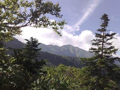 別山 と 柏島_e0360016_17285734.jpg