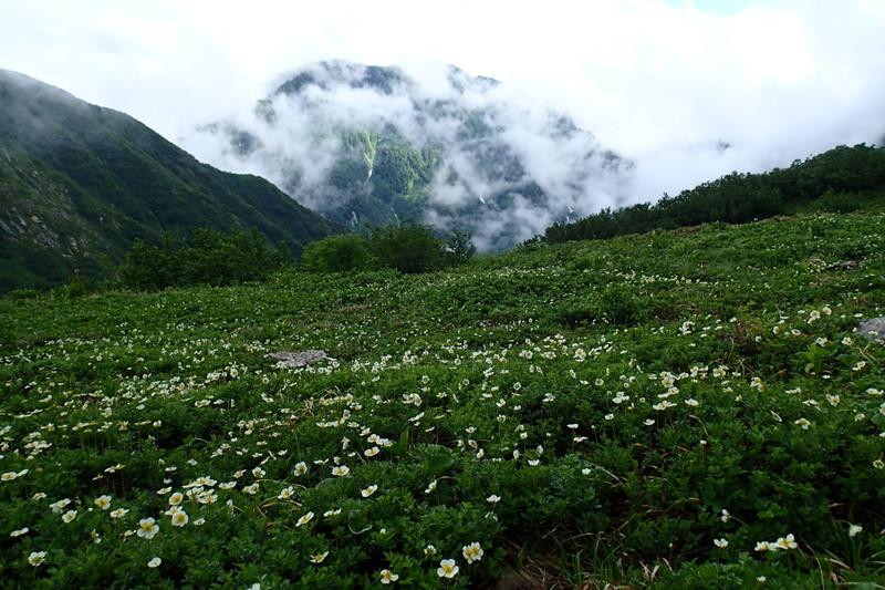 剱沢雪渓と水平歩道_e0360016_17312889.jpg