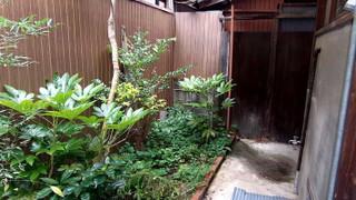 松本造園_e0360016_17314756.jpg