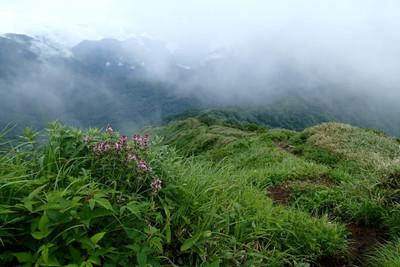 三ノ峰と長老ヶ岳_e0360016_17315743.jpg