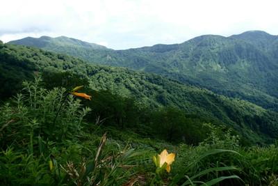 三ノ峰と長老ヶ岳_e0360016_17315833.jpg