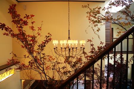 秋、11月の装花 紅葉と実ものの階段装花 ザ・ハウス白金様へ_a0042928_21475088.jpg