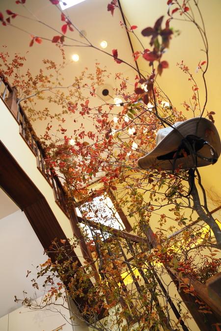 秋、11月の装花 紅葉と実ものの階段装花 ザ・ハウス白金様へ_a0042928_21505463.jpg