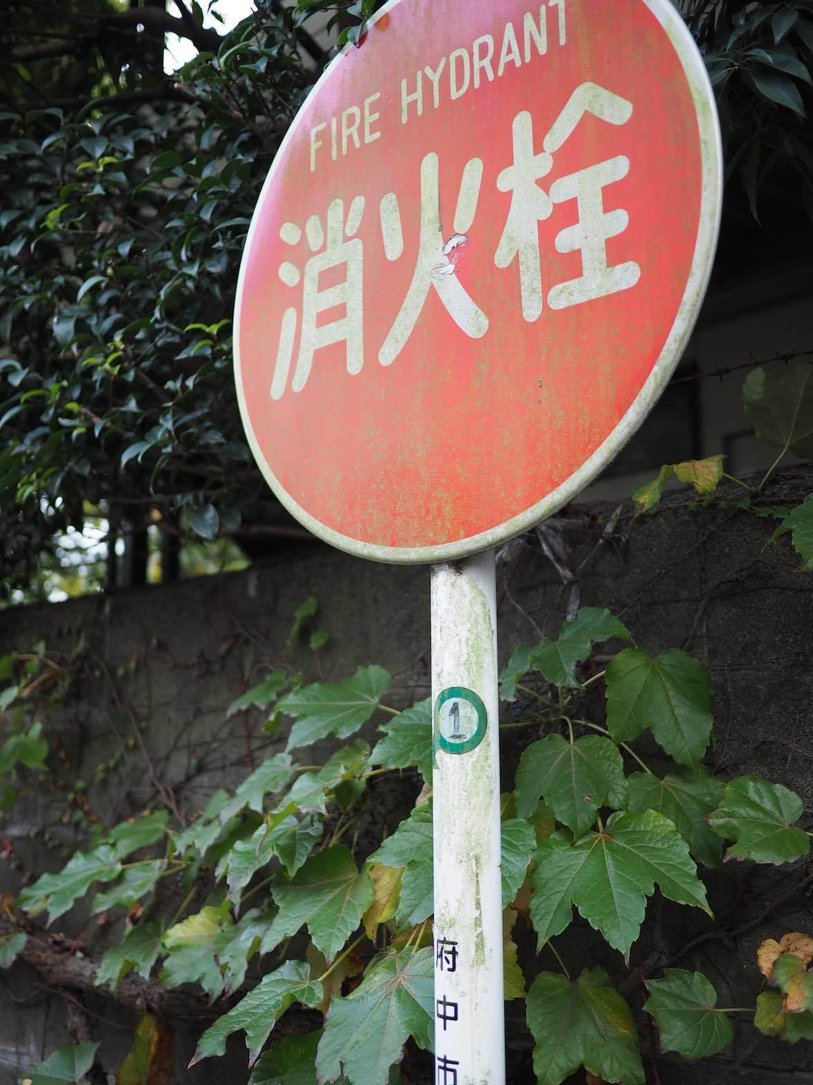 中河原周辺 3_b0360240_19475512.jpg
