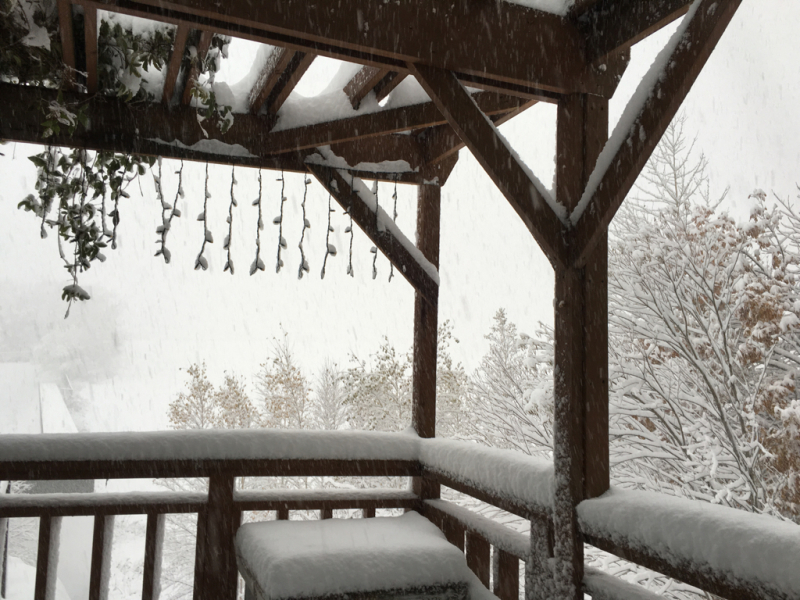 雪*雪*雪(・・;)_d0214172_09050695.jpg