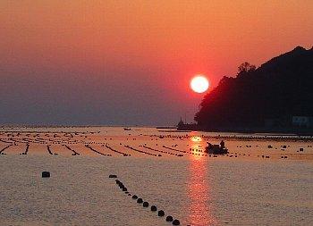 11月5日「夕焼け」_f0003283_09155276.jpg