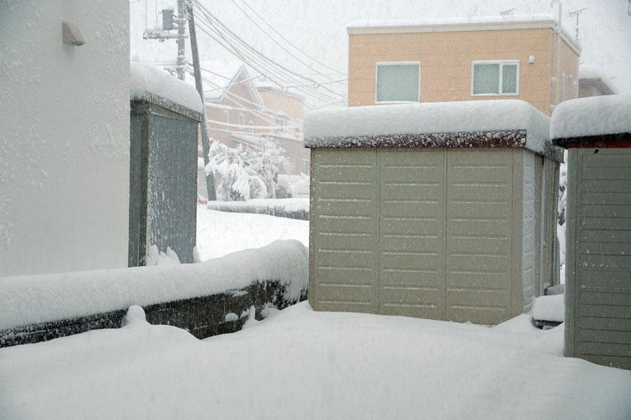 大雪_d0162994_8295222.jpg