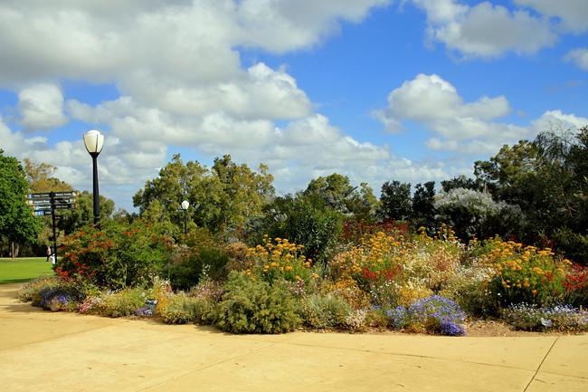 第二の故郷 西オーストラリア パースへ・・・_f0179404_20512840.jpg