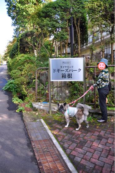 2016 秋の箱根旅行 その① 11/3編_f0329311_21544826.jpg