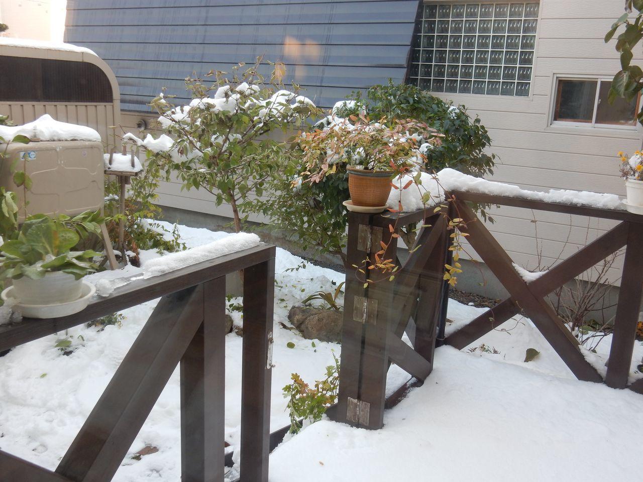 今日は降らず積雪深は10センチダウン_c0025115_22014957.jpg