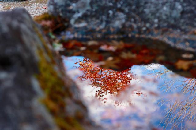 秋の日帰り信州 part 1_f0348831_08073997.jpg