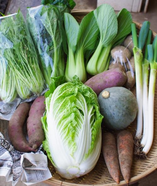 今週の野菜セット(11/8~11/12着)_c0110869_11322659.jpg